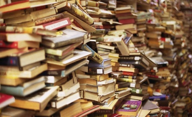 booksingiantpile