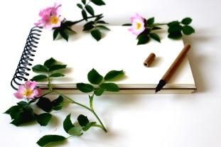 notebook-3397135_960_720