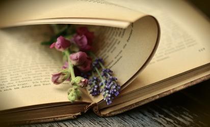 book-2363881_960_720